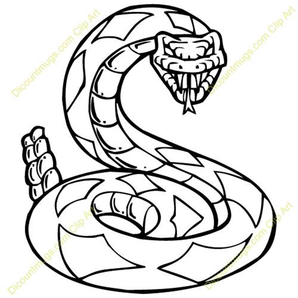 1000x1000 Cool Snake Drawings Rattle Snake Drawing Best Images Collections
