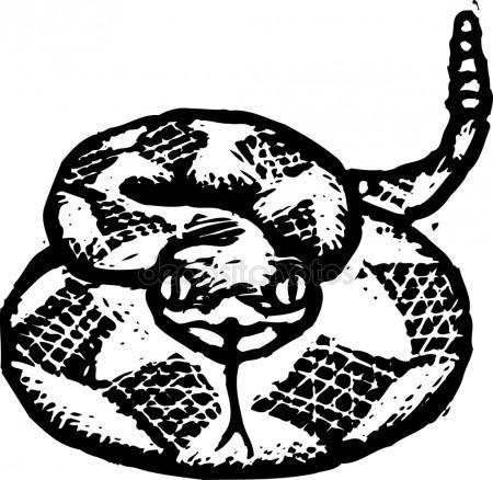 450x438 Rattle Snake Stock Vectors, Royalty Free Rattle Snake