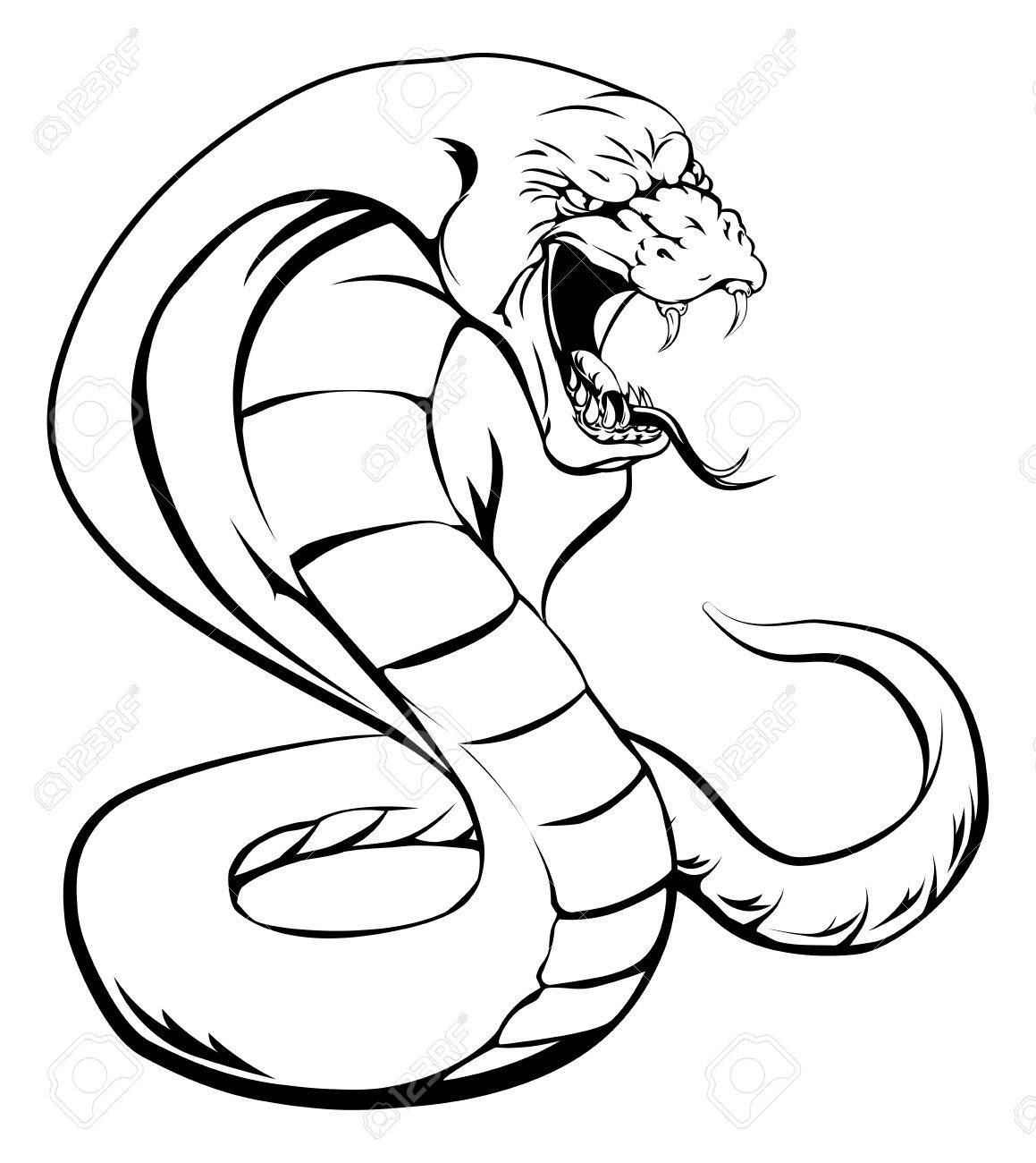 1159x1300 Attacking Snake Stock Photos Amp Pictures. Royalty Free Attacking