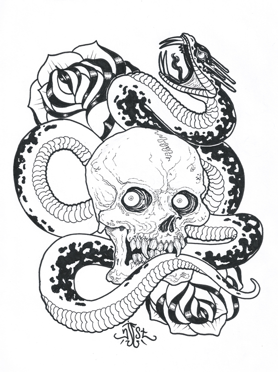 555x741 Skull And Snake Drawing By Njeststudio