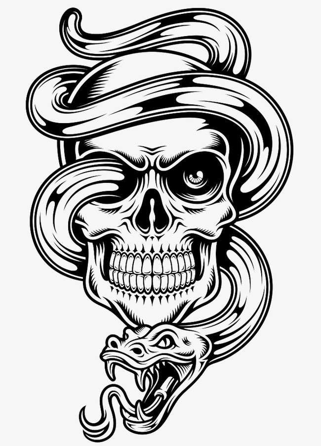 650x902 Vector venom Skull, Creative, Skull, Snake PNG and Vector for Free