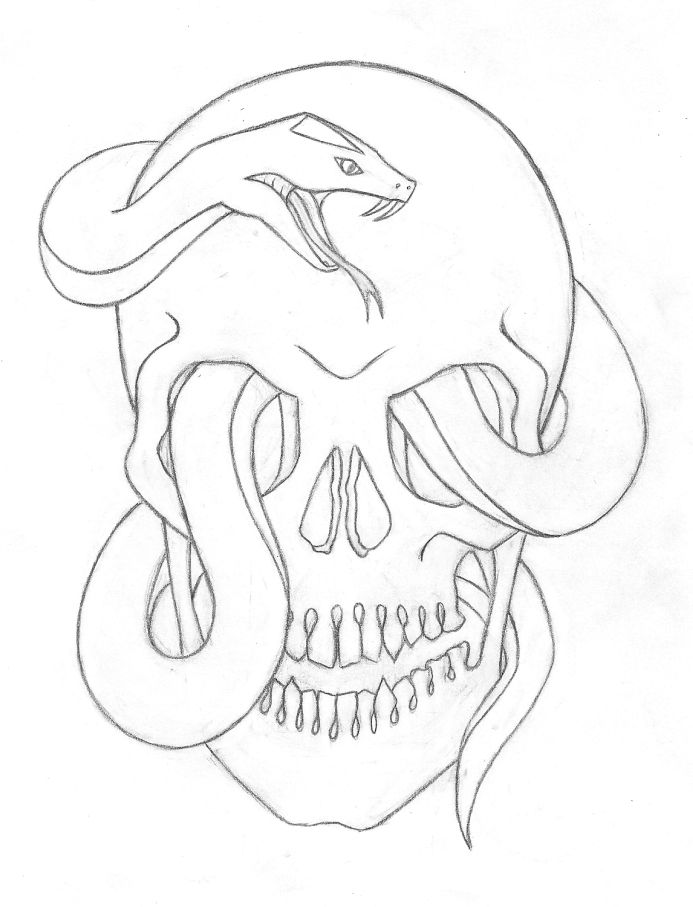 Snake And Skull Drawing at GetDrawings.com | Free for personal use ...