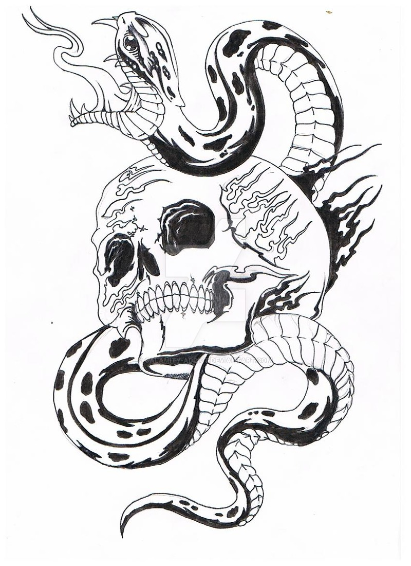 800x1100 skull and thes snake by Calamity addict on DeviantArt