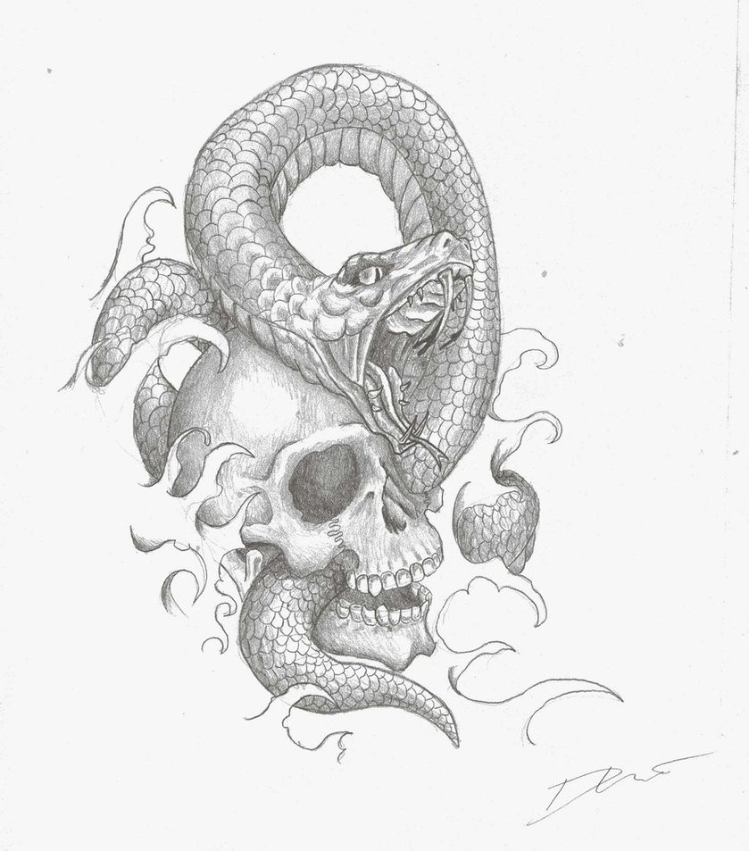 Snake and skull drawing at getdrawings free for personal use 1300x1300 free snake skull vector image 839x953 generic skullsnake combo by memison on deviantart thecheapjerseys Images