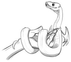 236x207 art Sketch doodle snake noodle Ball python Draw Pinterest