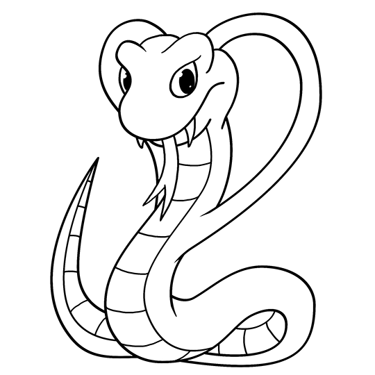540x540 Cartoon Cobra Step By Step Drawing Lesson