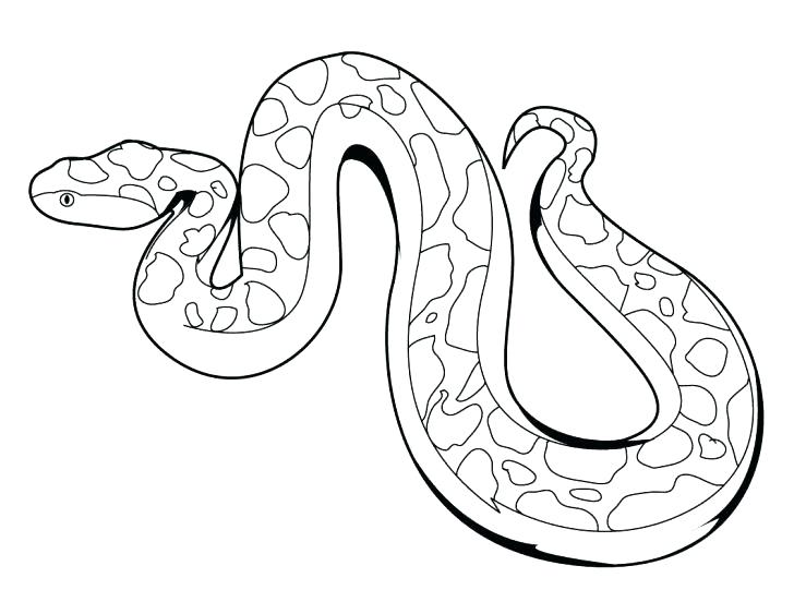 728x563 Coloring Pages Snake Snakes Coloring Pages Printable Snake