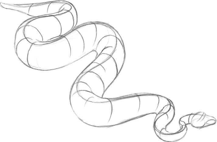 714x468 Snake