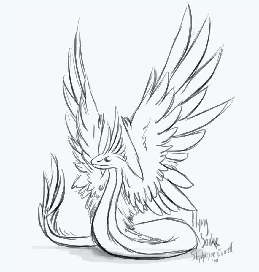 873x916 Winged Snake Sketch By Anuxinamoon