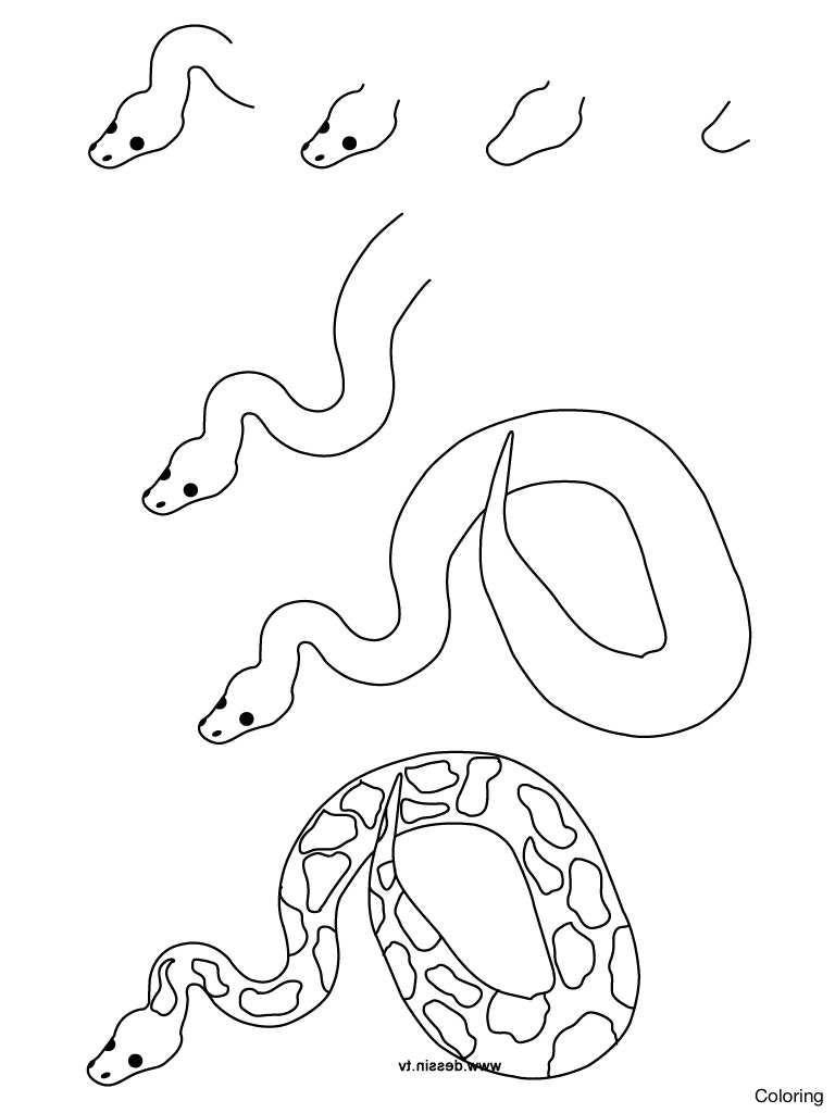 768x1024 Gopher Snake Sketch How To Draw Coloring Facial Diagram 10f Cobra
