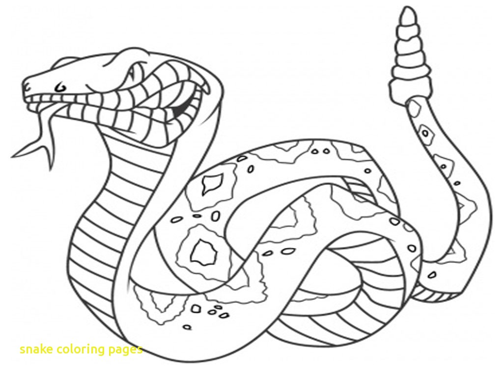 1024x768 Snake Coloring Pages With Snake Coloring Pages 16 Coloring Kids