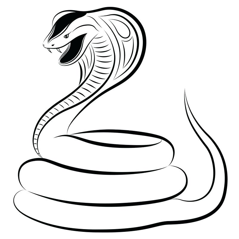 Snake Drawing For Kids at GetDrawings.com | Free for ...