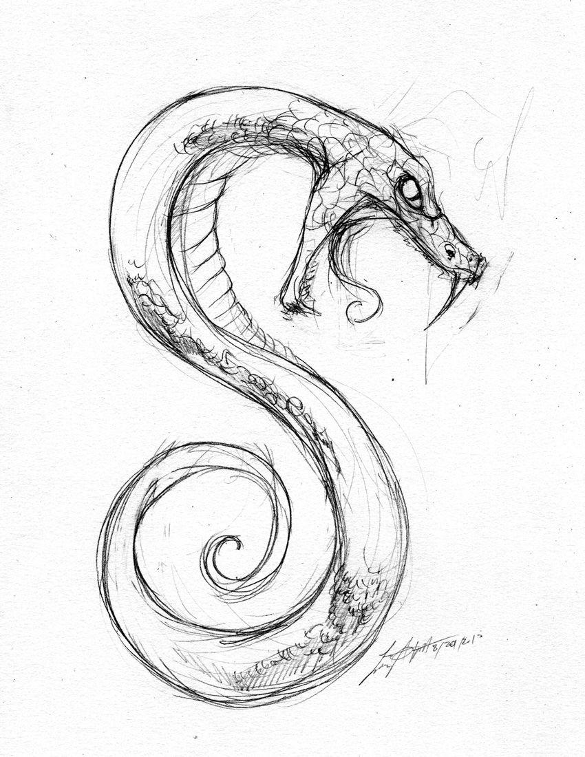 850x1100 Snake Sketch … Pinteres…