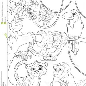 300x300 Rainforest Animals Snake Easy To Draw How To Draw A Cartoon Snake