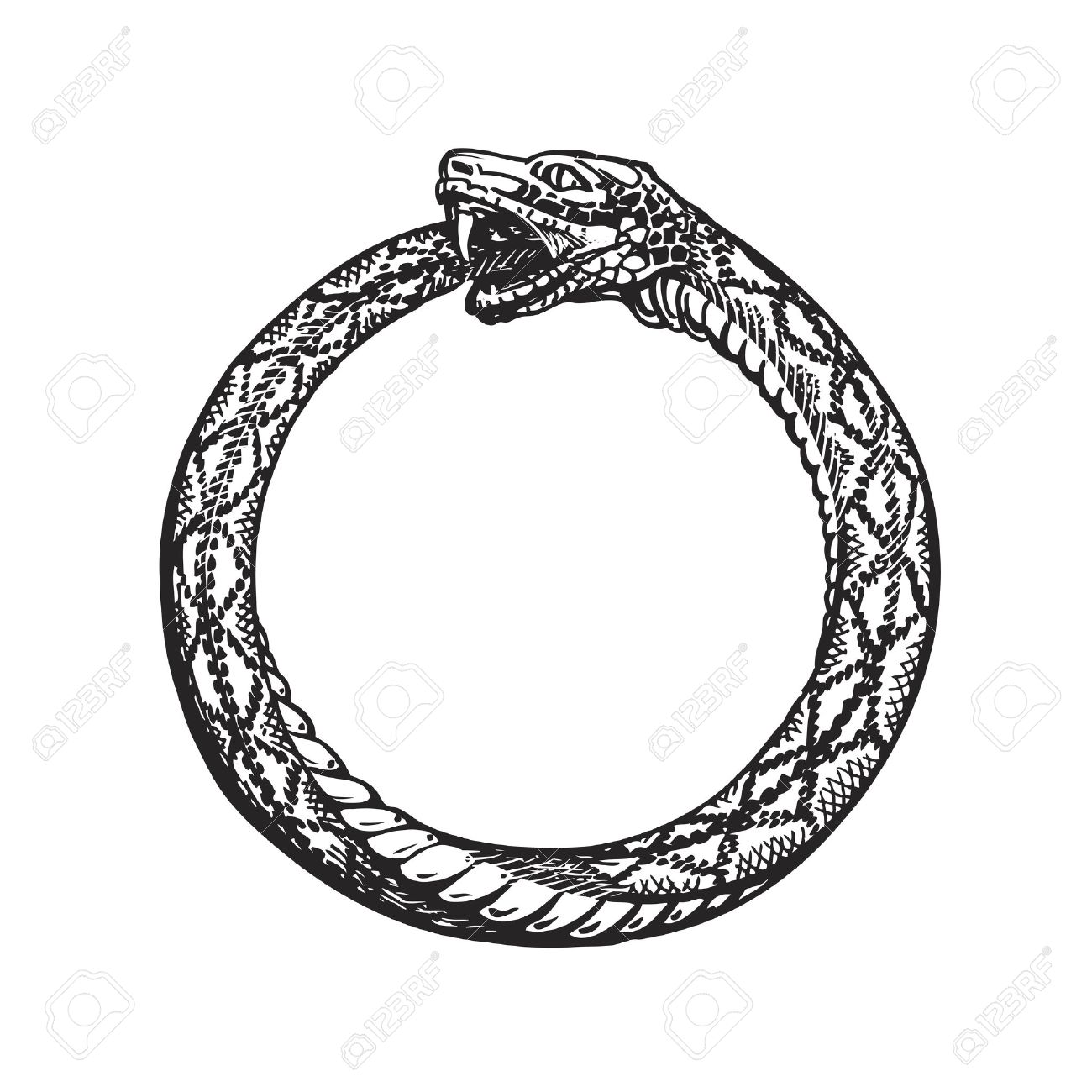 1300x1300 Ouroboros. Snake Eating Its Own Tail. Eternity Or Infinity Symbol