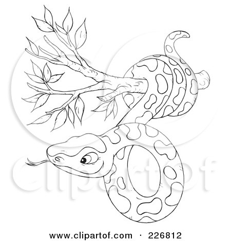 450x470 Coloring Page Outline Of A Snake In A Tree Posters, Art Prints By