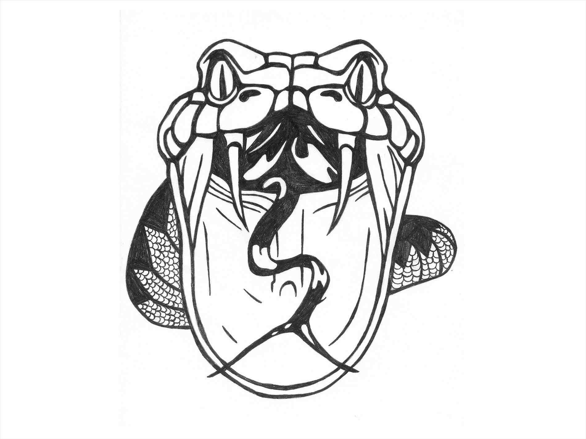 1900x1425 Pin Snake Clipart Drawn 4 Face 1 Drawing