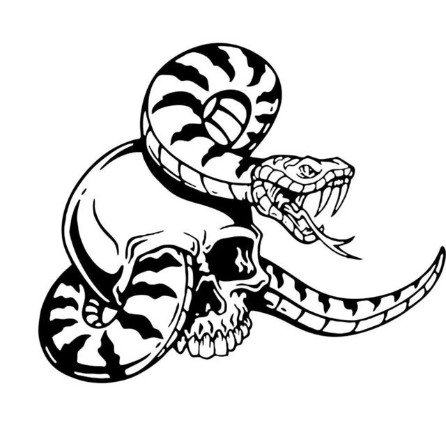 Snake Skeleton Drawing
