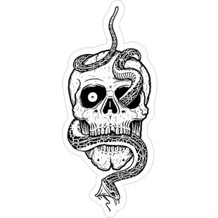 310x310 Min.order Is 10(Mix Order)exclusive Selling Shuttle Snake Skeleton