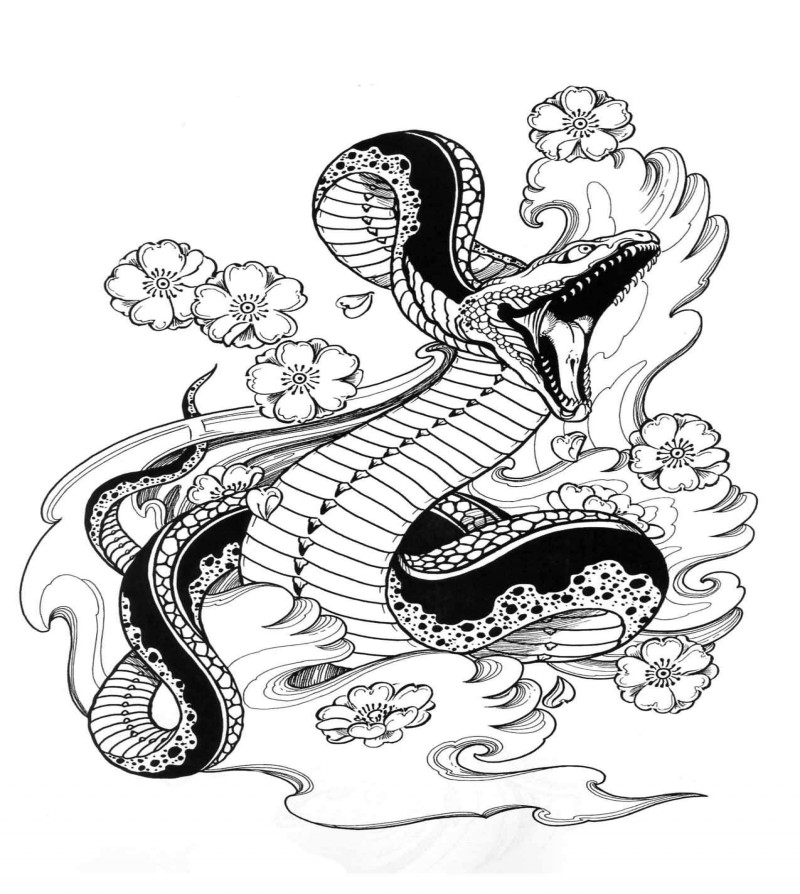 800x894 Amazing Open Mouth Snake With Cherry Blossom Tattoo Design