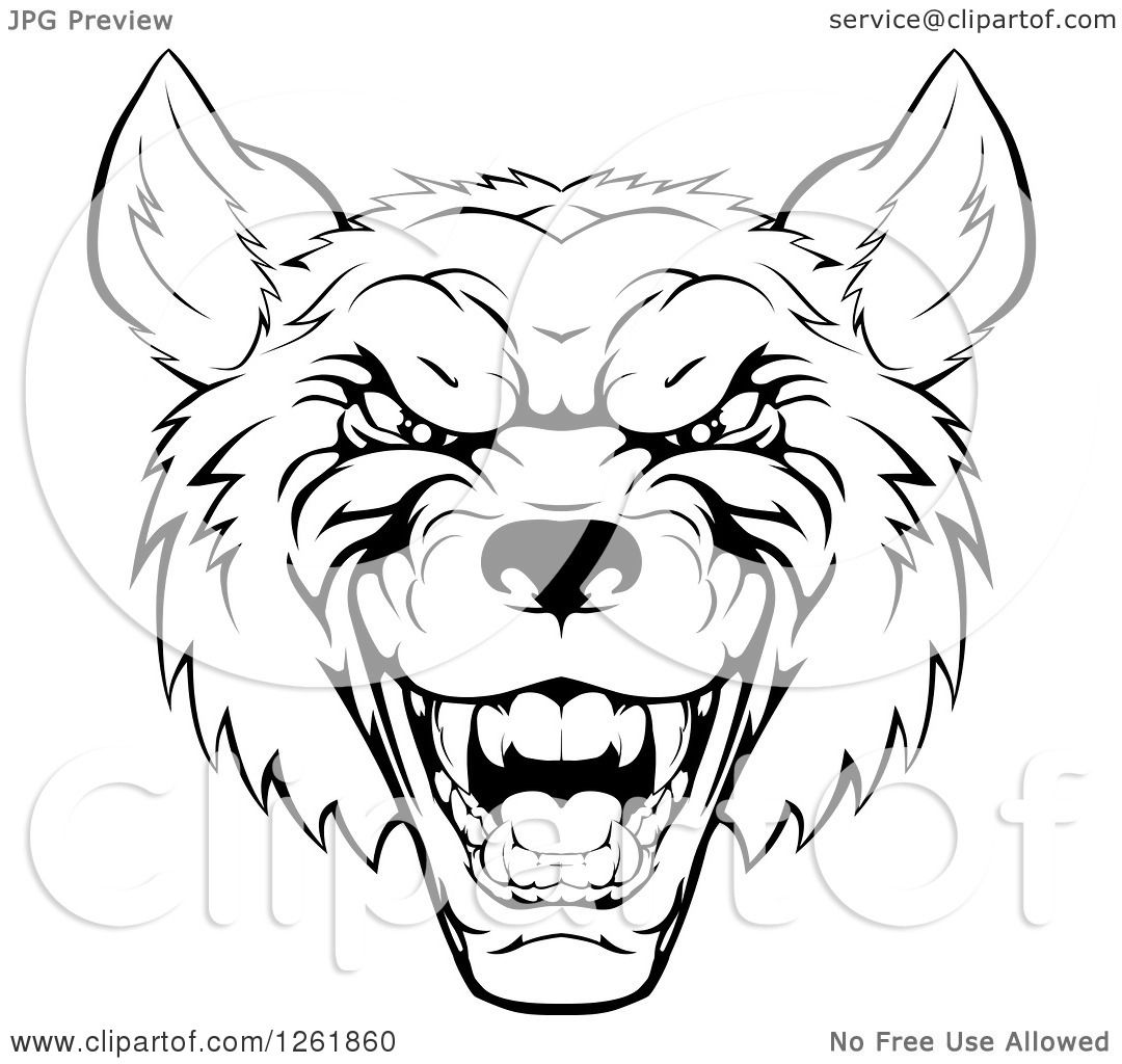 1080x1024 Clipart Of A Growling Black And White Aggressive Wolf Face