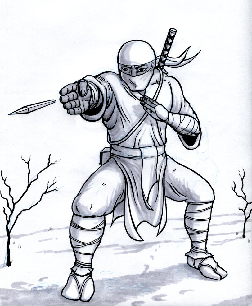 812x984 Ninja From The Snow Leopard Clan By Davidwfisher