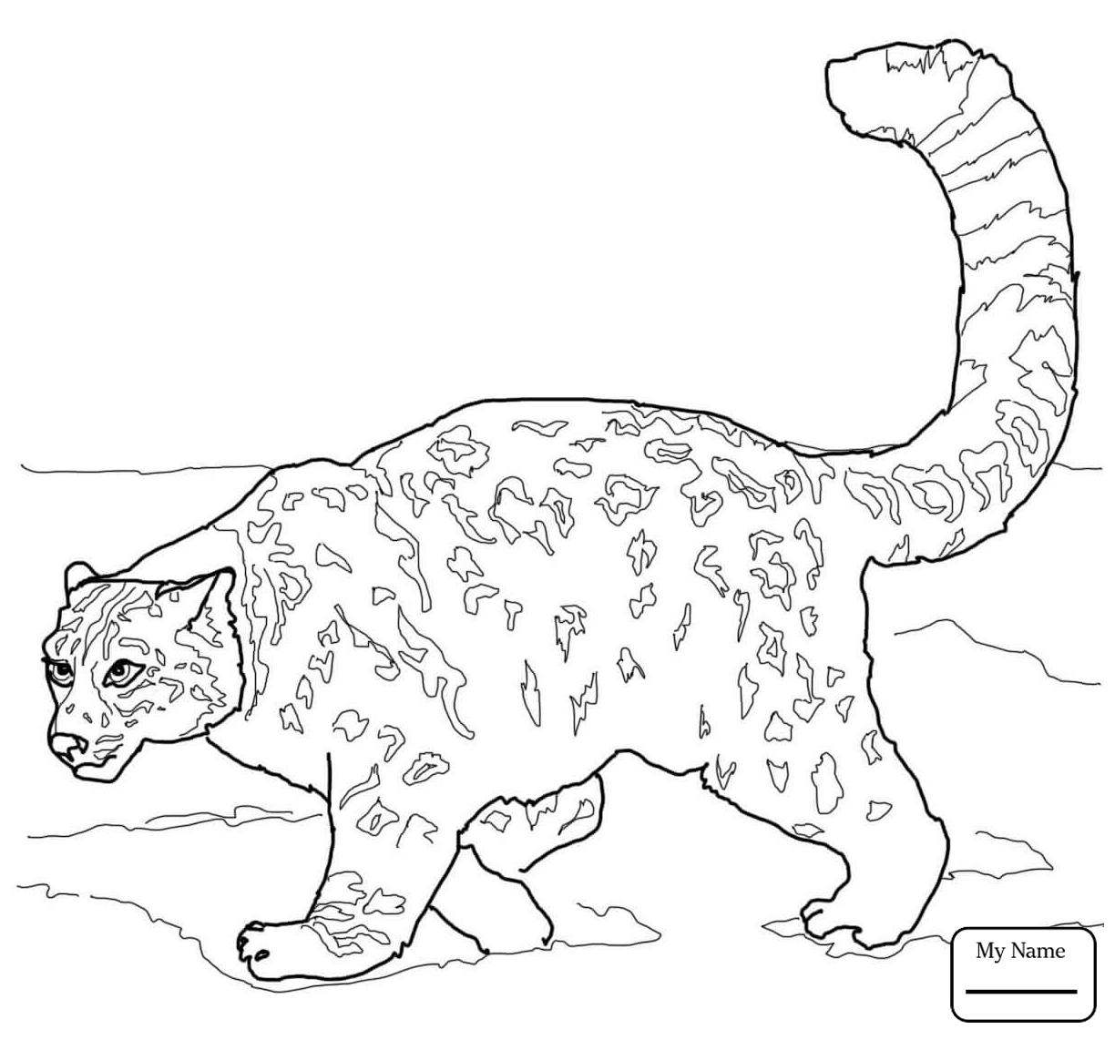 1224x1142 Coloring Pages For Kids Snow Leopards Mammals Crouching Snow
