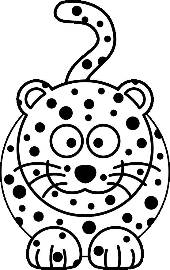 555x878 Amur Leopard Clipart Snow Leopard