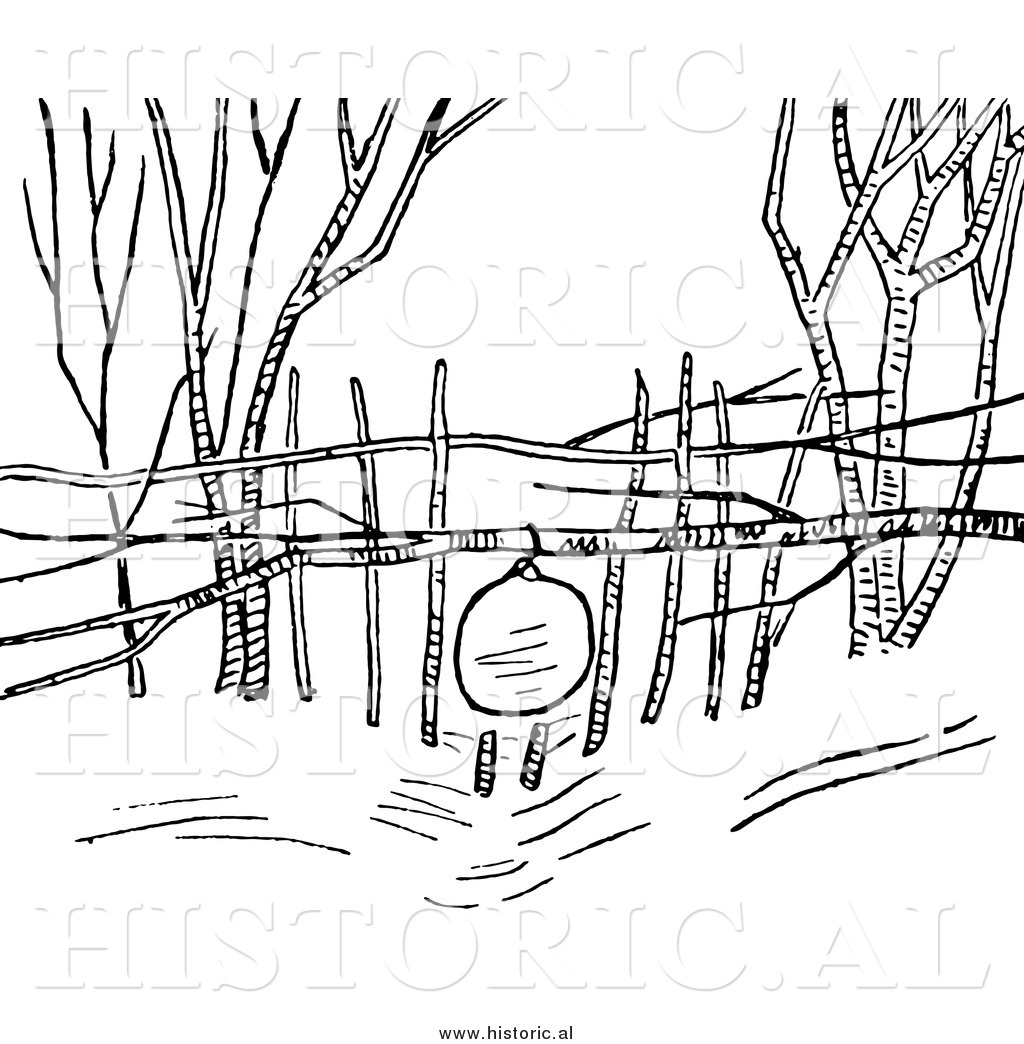 1024x1044 Clipart Of A Snowshoe Rabbit Snare Trap
