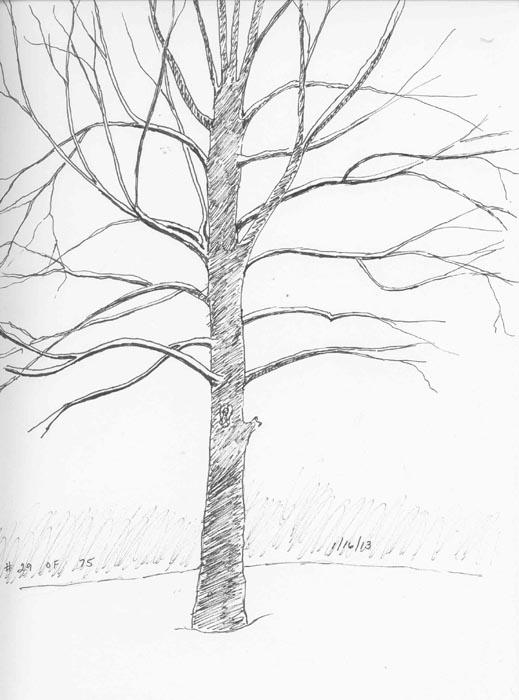 519x700 Michelle's 75 Day Sketch Challenge [Archive]