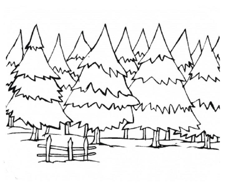 733x595 Winter Landscapes Coloring Sheets