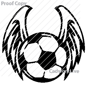 300x300 How To Draw A Soccer Ball With Wings