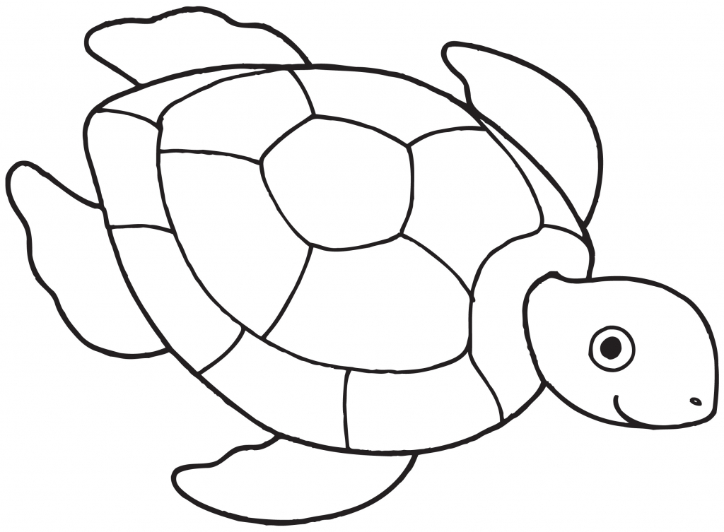 1024x753 Coloring Pages Turtle Drawings Fjl How To Draw A For Kids Step 5