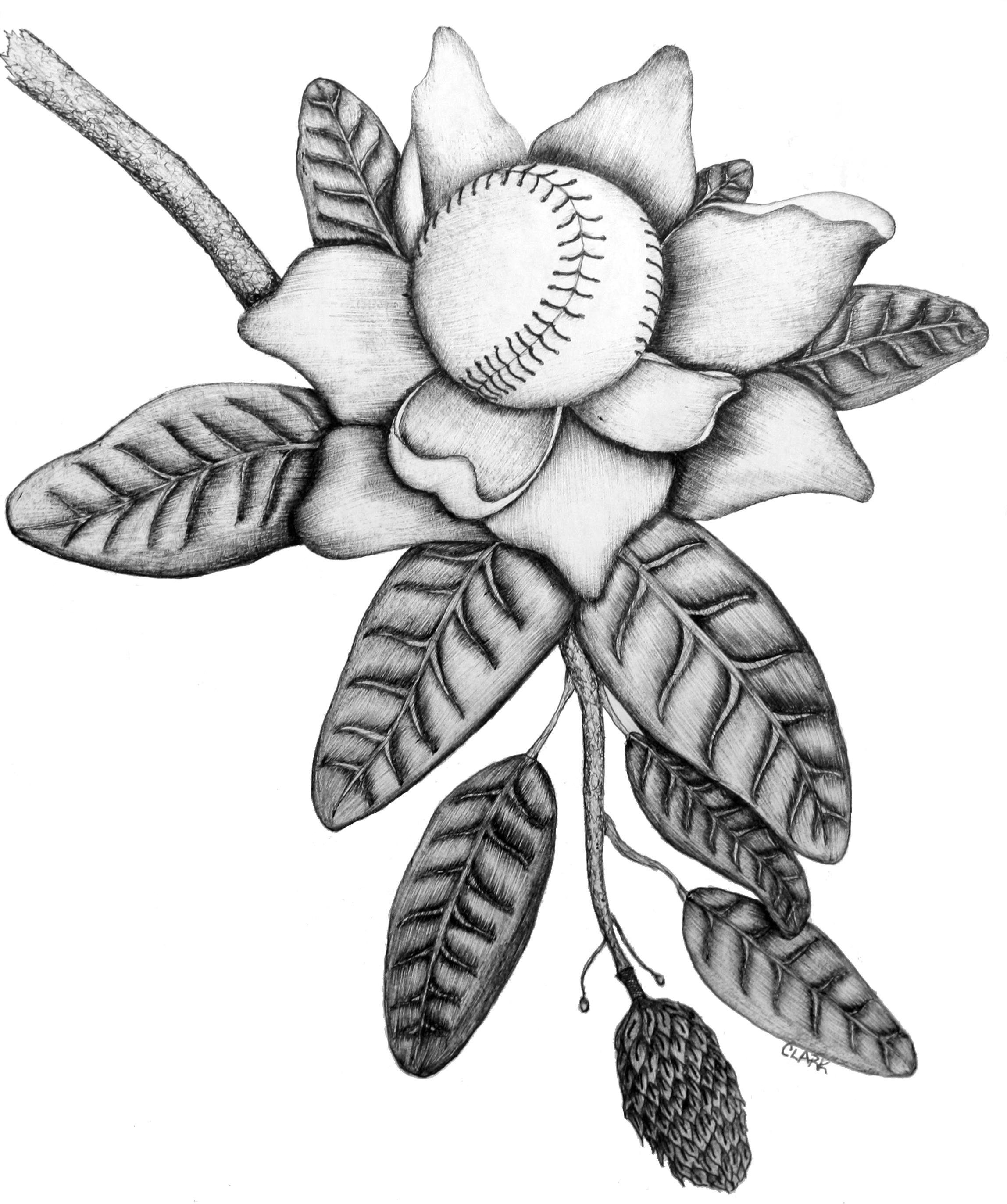 2296x2744 Clarkartistry Magnolia Softball.jpg