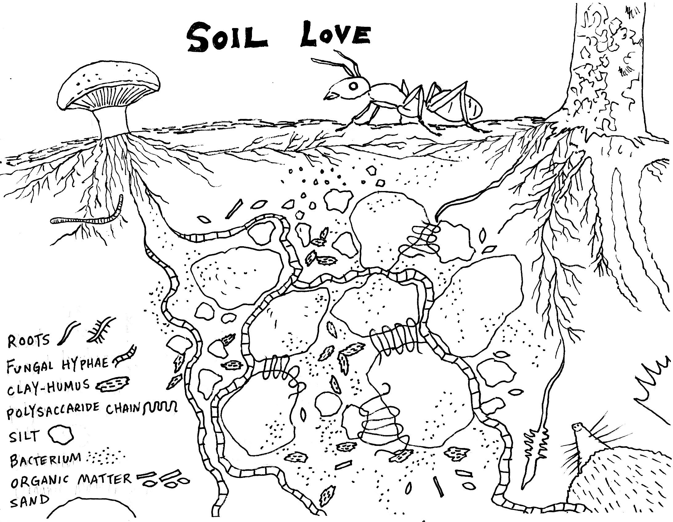 Soil Drawing