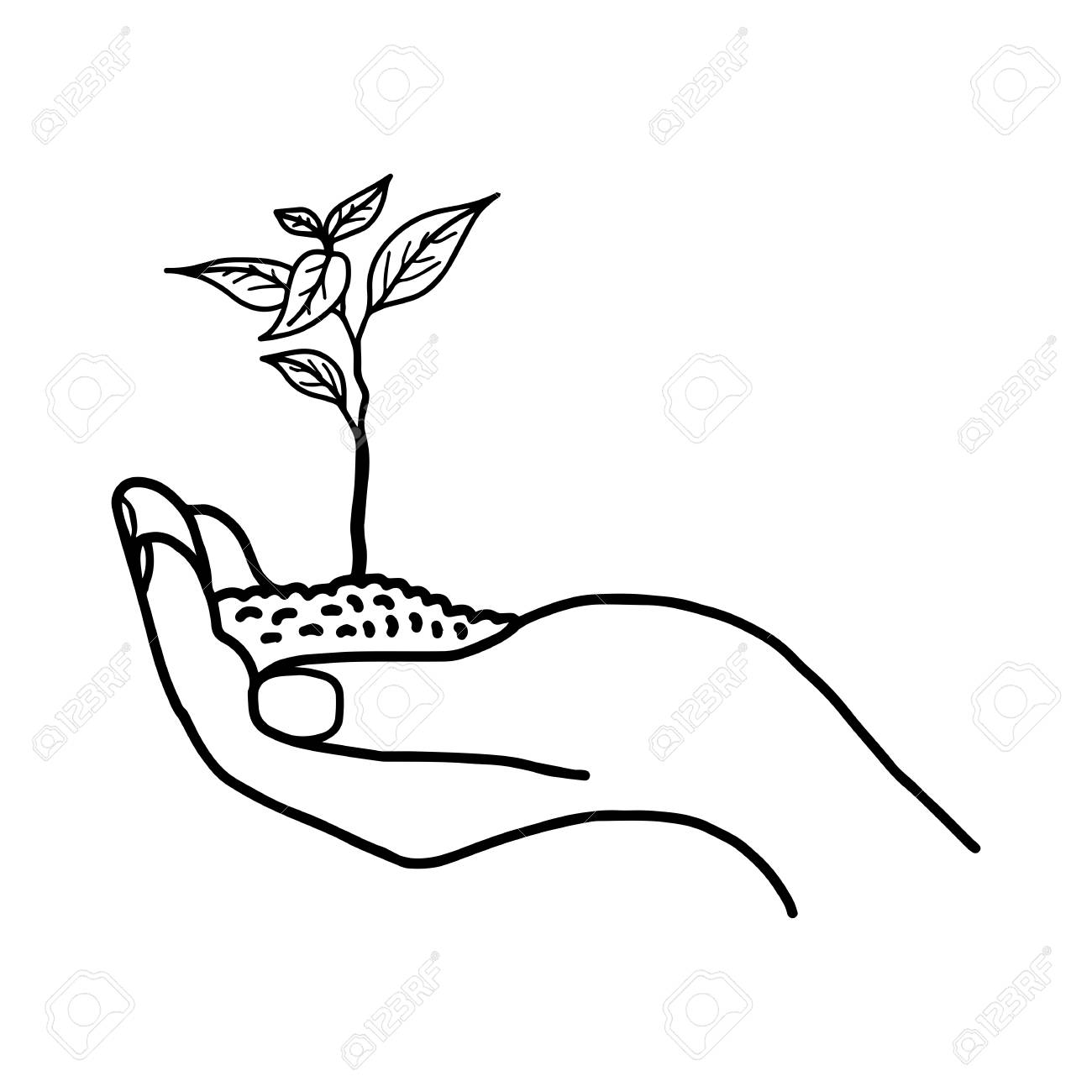 1300x1300 Growing Plant Or Sprout With Soil In Left Hand