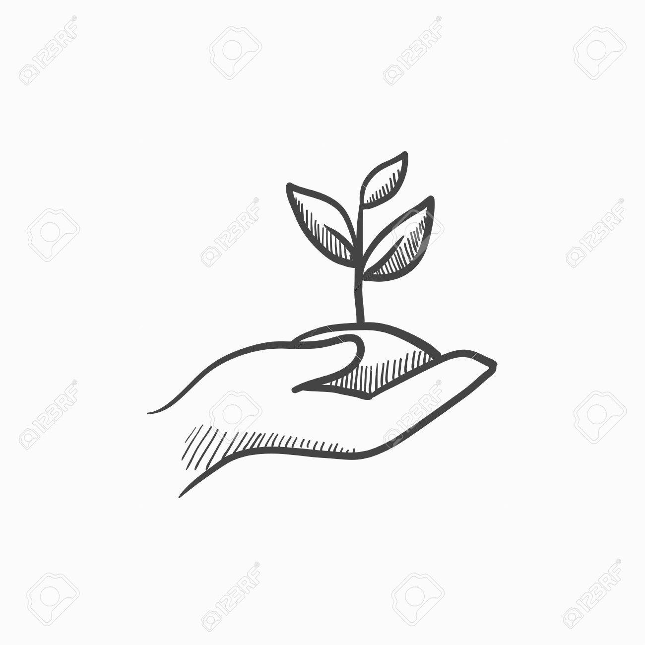 1300x1300 Hands Holding Seedling In Soil Vector Sketch Icon Isolated