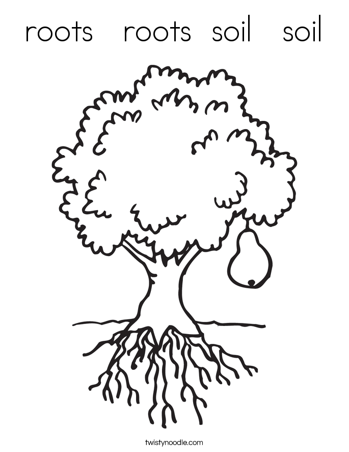 685x886 Roots Roots Soil Soil Coloring Page