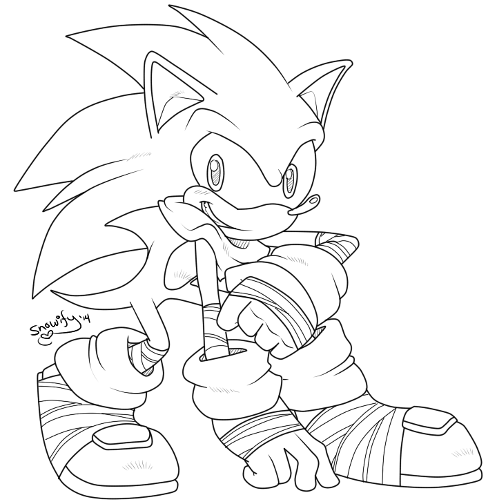 720x730 Sonic Boom
