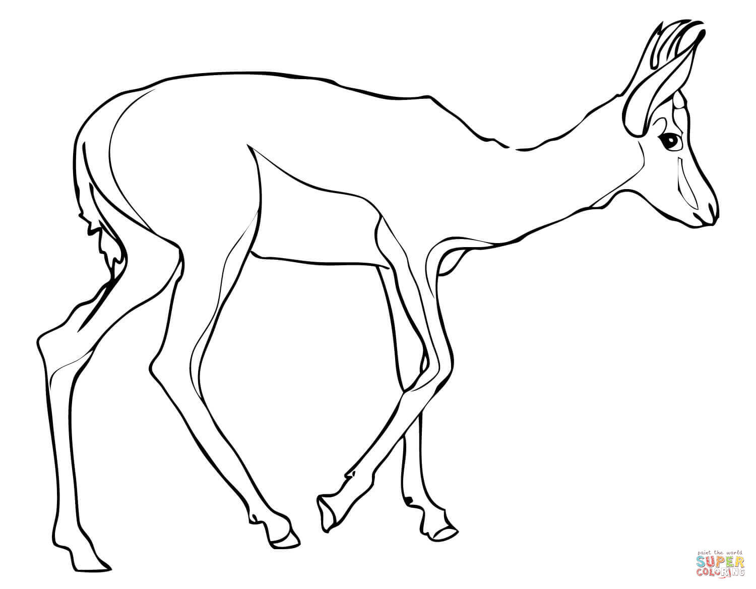 1500x1168 Springbok Coloring Page Free Printable Coloring Pages