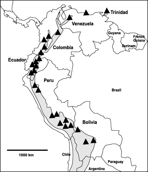 500x583 Of North Western South America. Shaded Area Represents