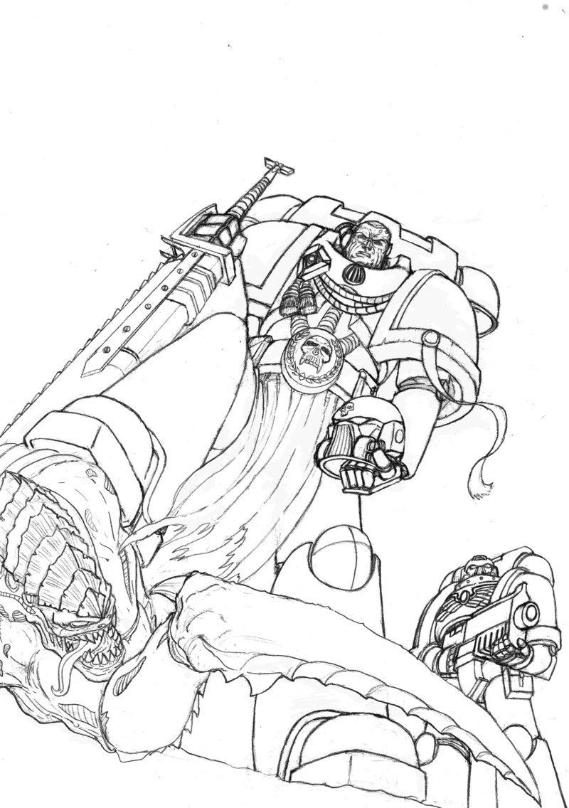 800x1136 Warhammer Space Marines Sketch By Artofjustaman