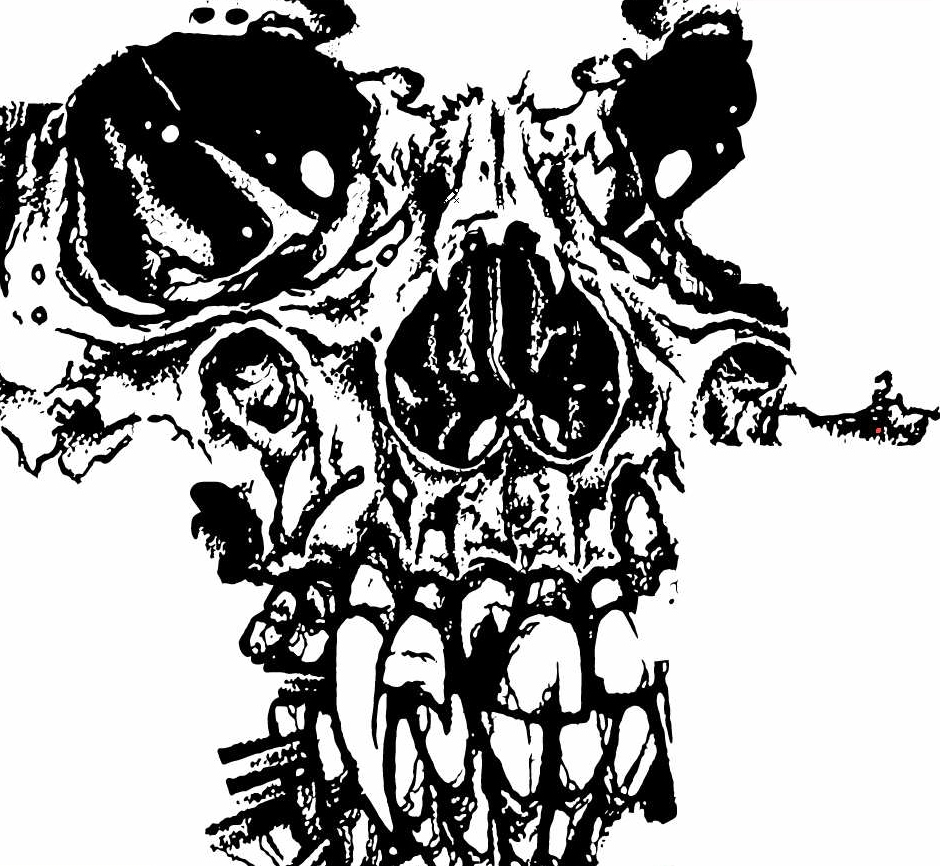 940x866 Up Close To Skull With Negative Space