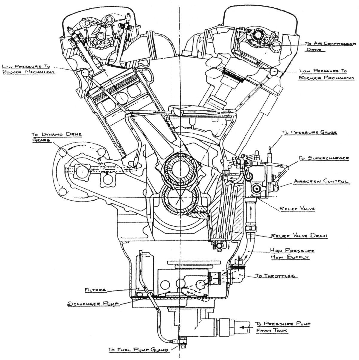 1200x1204 Ramp Head Merlin