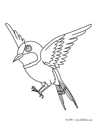 364x470 Coloring Pictures Of Birds Flying Sparrow Online Coloring Coloring