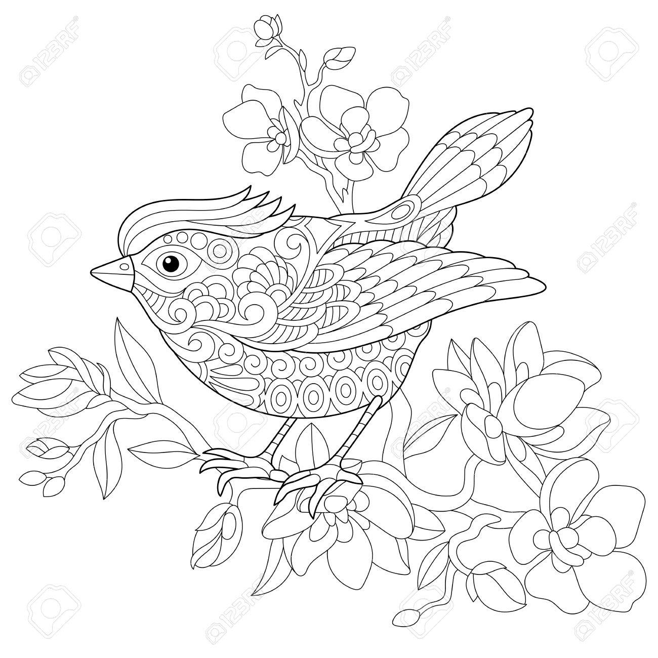 1300x1300 Coloring Book Page Of Sparrow Bird Sitting On Apple Blossoming