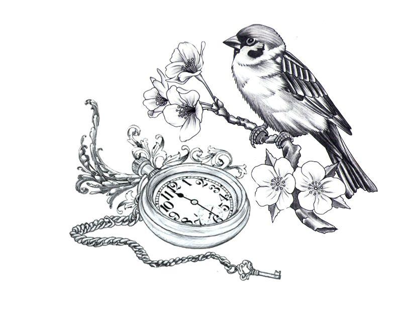 800x614 Drawn Sakura Blossom Sparrows