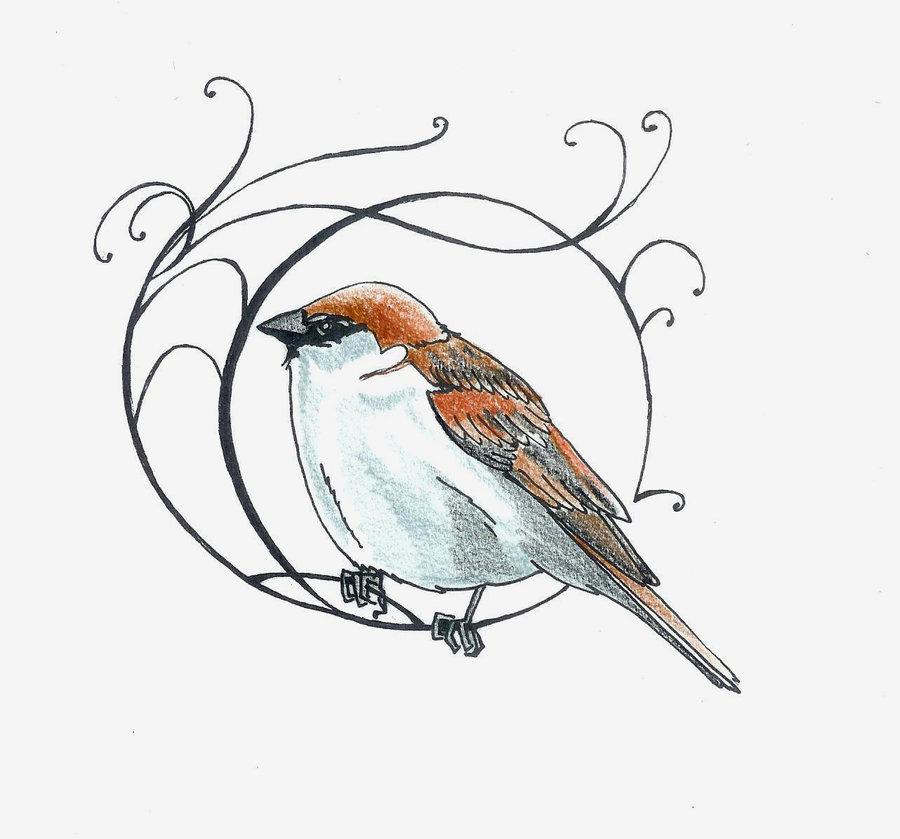 900x839 Little Sparrow By ~koshii Boids Sparrow Tattoo