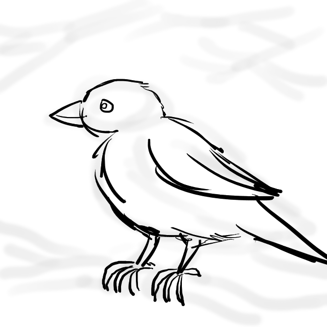 640x640 Sparrow, Little Sparrow Wildersoul Colouring Book