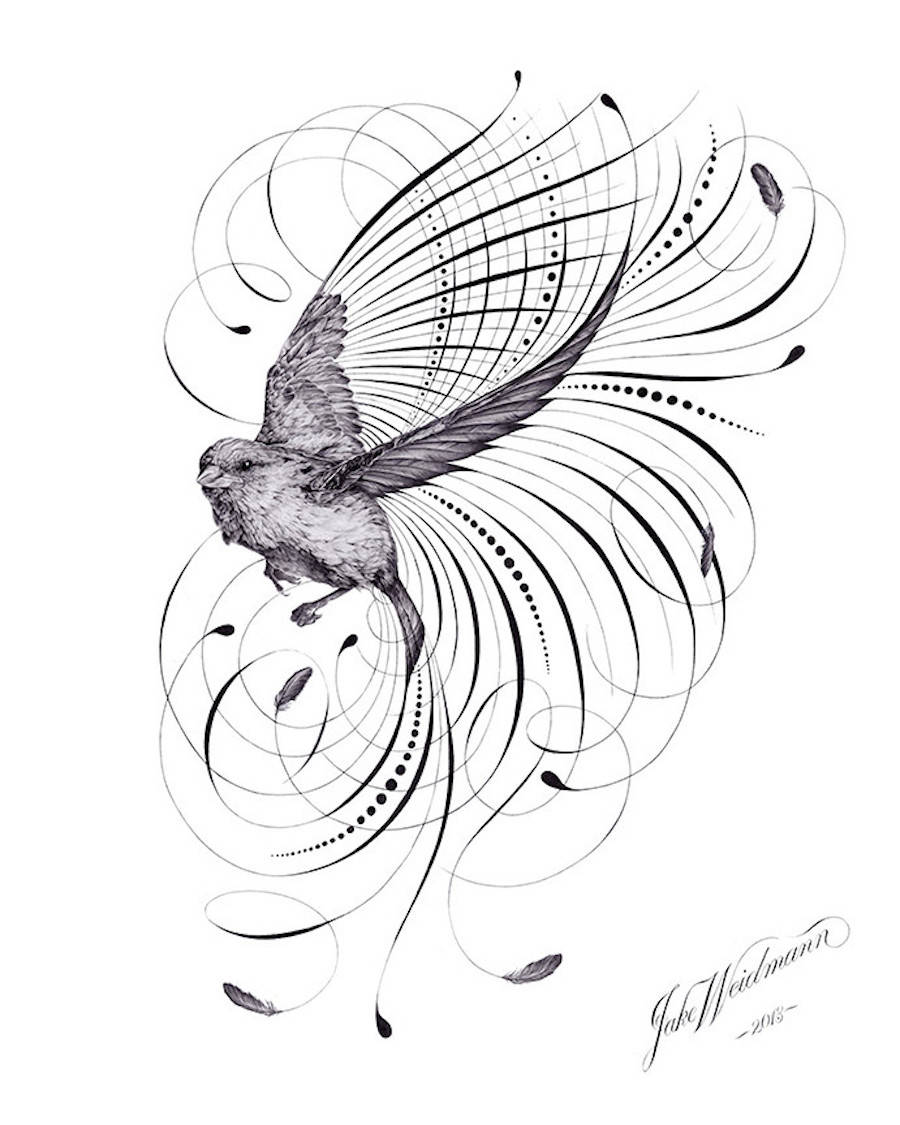 900x1125 Calligraphy And Drawings Artwork Made With Plume Draw, Artwork